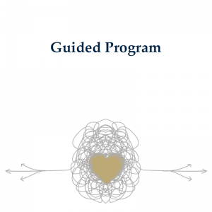 Guided Relationship Program