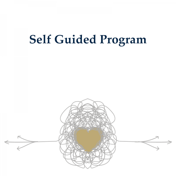 Self Guided Relationship Program